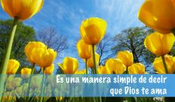 Spanish Tulips Outreach Connect Card
