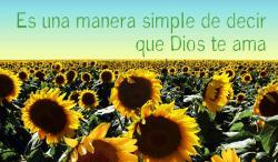 Spanish Sunflowers Outreach Connect Card